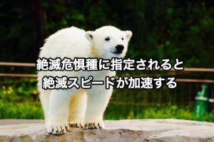 絶滅危惧種に指定されると絶滅スピードが加速する